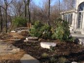 Rockford landscape design services include planting
