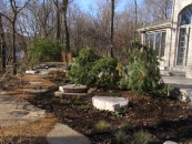 Rockford landscape design services include planting