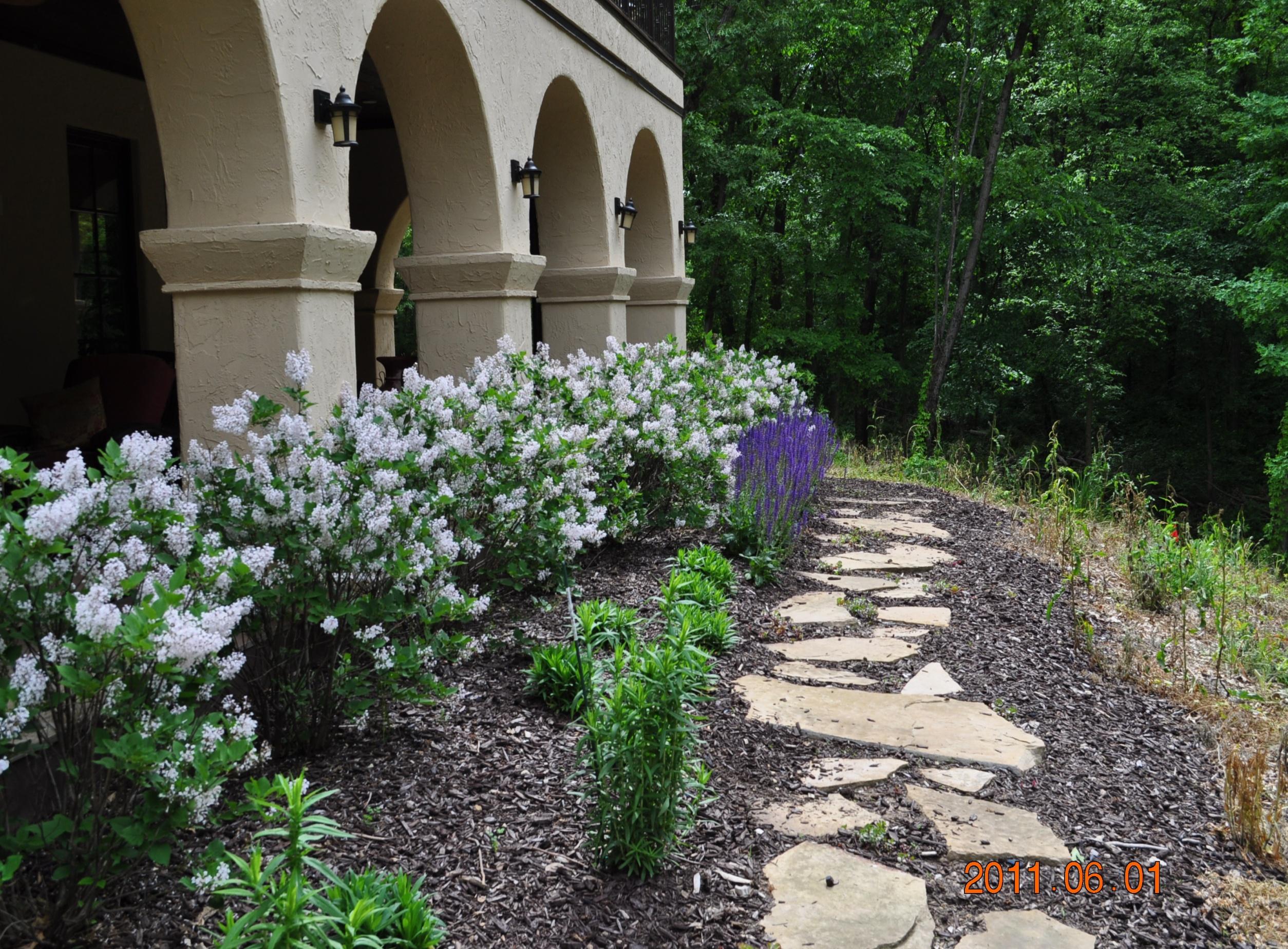 Rockford landscaping